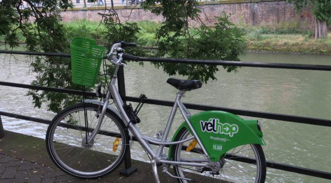 Rhinruten dag 9, 2. august: Hviledag i Strasbourg