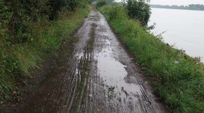 Rhinruten dag 11, 4. august. Langs Rhinen i regn