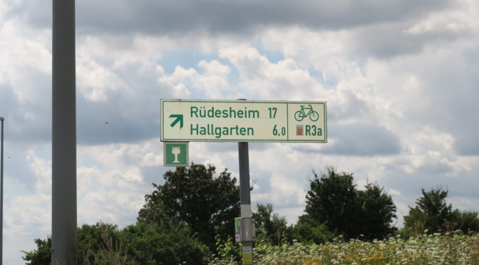 Rhinruten dag 12, 5. august. Restitusjon i Rheingau