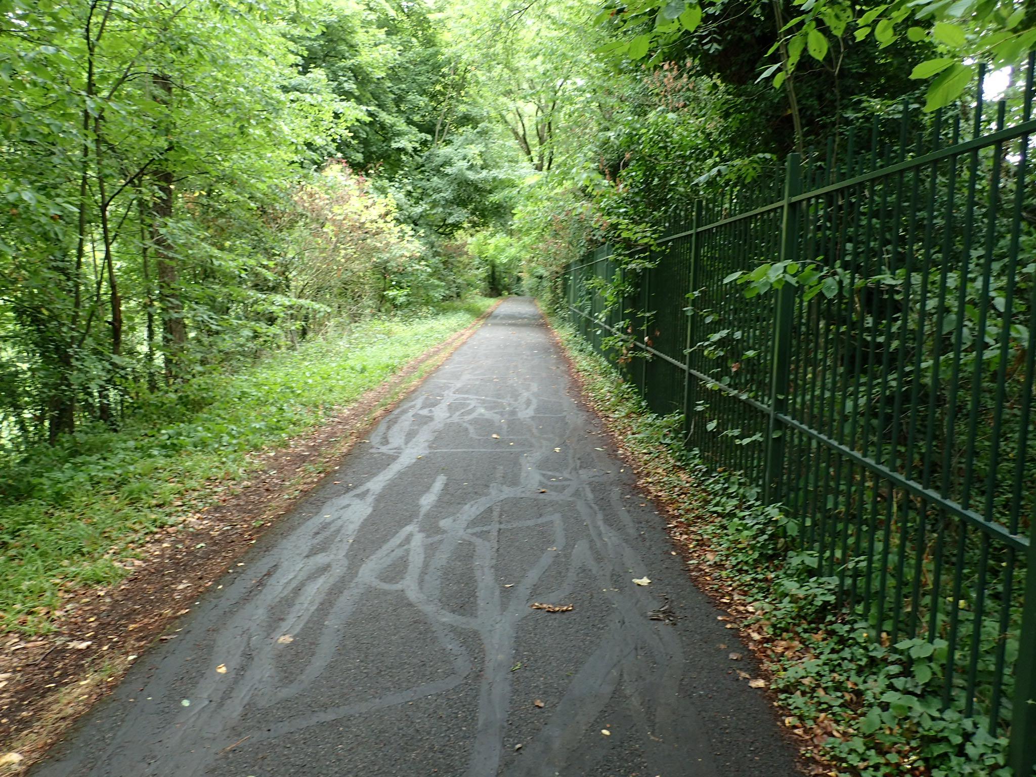 Paris, sykkelvei i skog
