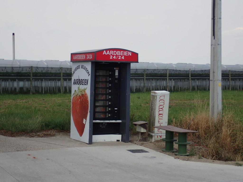 Jordbærautomat