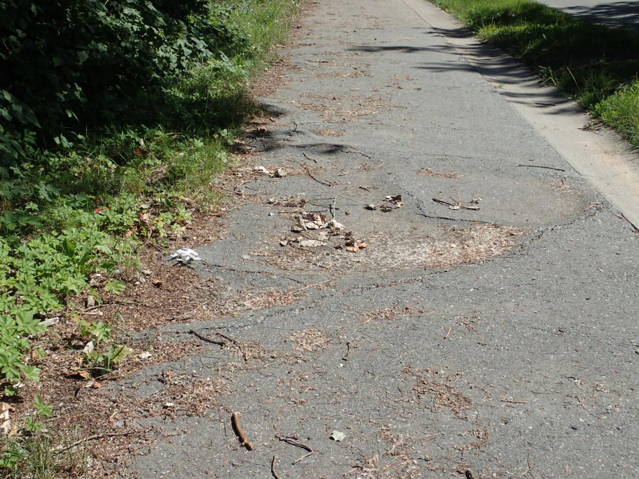 Sykkelvei, dårlig vedlikehold, Tyskland
