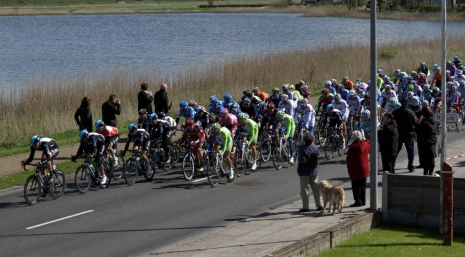 I vini del Giro d'Italia 2015. 4. etappe: Chiavari — La Spezia