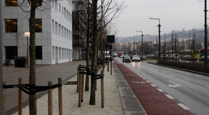 Trærne i Bjørvika — hvordan misbruke en mulighet til god sykkelløsning