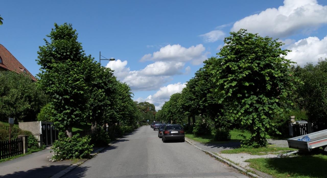 Sykkelstrekninger i Oslo. Mellom ringene (Skøyen-Bryn) — tur og lokalvei. Del 2: Blindern — Akerselven