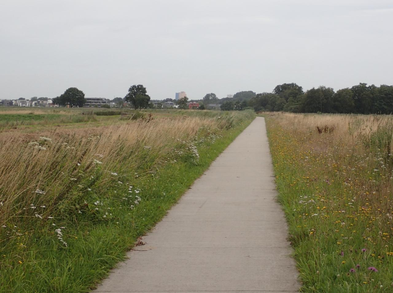 Sykkelvei mot Groningen